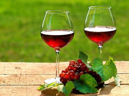 В Молдове расположены одни из лучших виноградников в Европе
