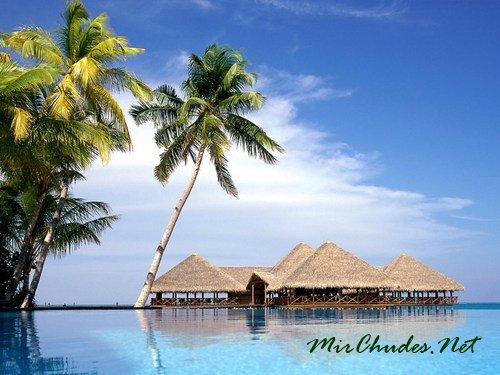 Мальдивские острова — одни из самых красивых мест на планете.