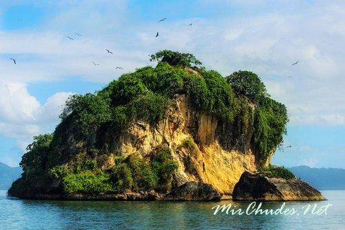 Остров птиц (Доминиканская Республика)