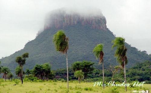 Национальный парк Серро-Кора в Парагвае.