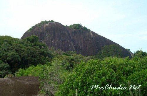 Гора Voltzberg в Центральном Заповеднике Суринама — первый в мире заповедник тропической природы на земле, основаный в 1961 году.