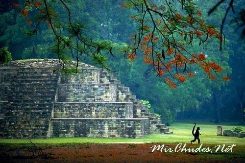 Копан — комплекс древних пирамид цивилизации майя в Гондурасе.