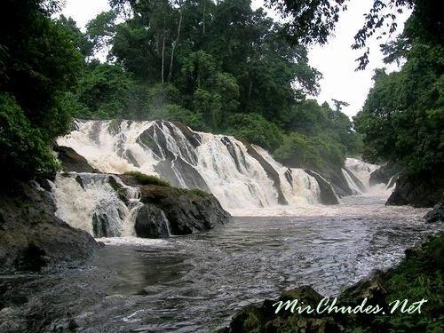 Национальный парк Монте Ален (Monte Alen National Park) — настоящее сокровище Экваториальной Гвинеи.