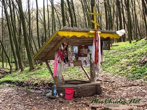 Колодец Рожены, или, как еще называют ее жители близлежащих сел, Ружена, в любое время года украшена иконами, полотенцами и гроздьями калины.
