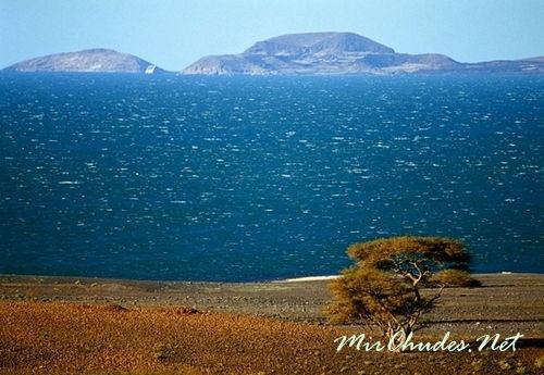Озеро Туркана (старое название озеро Рудольфа) - самое большое пустынное озеро в Мире.