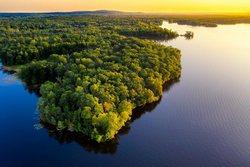 Амазонские леса — это естественная оранжерея, раскинувшейся на огромных пространствах от Анд до берегов Атлантики.