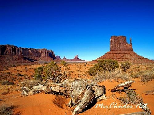 Гранд-Каньон — самое большое ущелье в Мире.