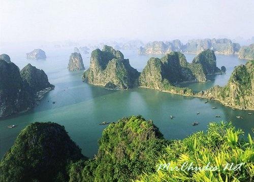 Из всех островов бухты Ха-Лонг, 989 имеют собственные названия.