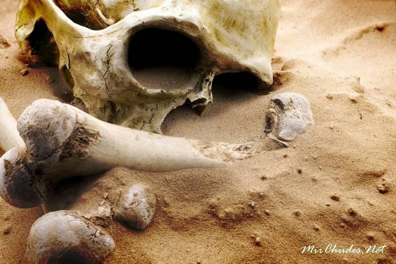 государственные факты о великанах найденных археологами Таиланда стал