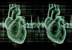 Люди с двумя  сердцами